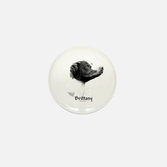 Brittany Charcoal Mini Button
