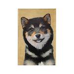 Shiba Inu (Black and Ta Rectangle Magnet (10 pack)
