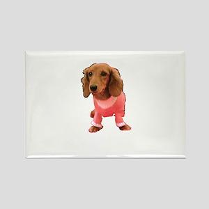 Pink Cutie Dachshund from Arizona Designer Rectang
