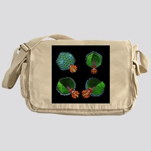 Bacteriophage P22, computer model - Messenger Bag