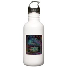 Wishes Water Bottle