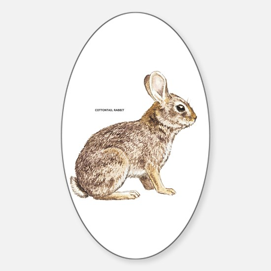 Cottontail Rabbit Sticker (Oval)