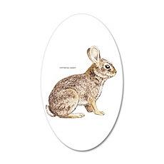 Cottontail Rabbit Wall Sticker
