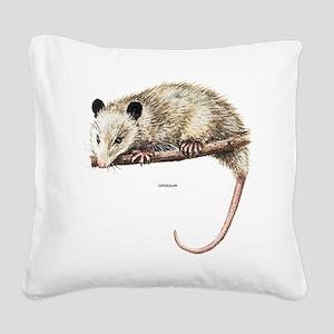 Opossum Animal Square Canvas Pillow
