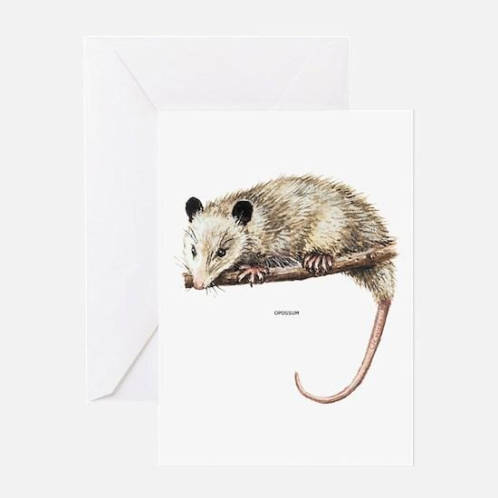 Opossum Animal Greeting Card