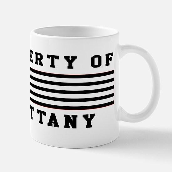 Property Of Brittany Mug