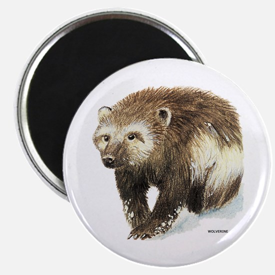 Wolverine Animal Magnet