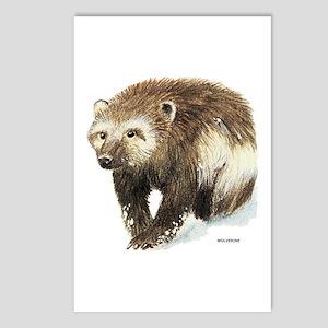 Wolverine Animal Postcards (Package of 8)