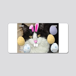 Easter Longhaired Black and White Kitty Cat Alumin