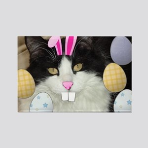 Easter Longhaired Black and White Kitty Cat Rectan