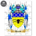 Becard Puzzle
