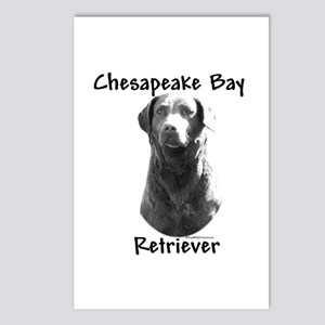 Chessie Charcoal Postcards (Package of 8)