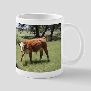 Hereford Calf at the LBJ Ranch Mug