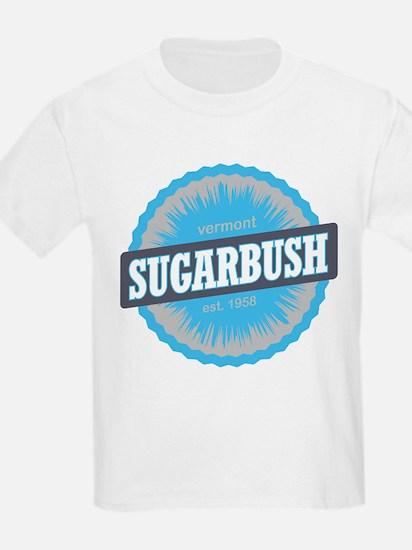 Ski Resort Vermont Sky Blue T-Shirt