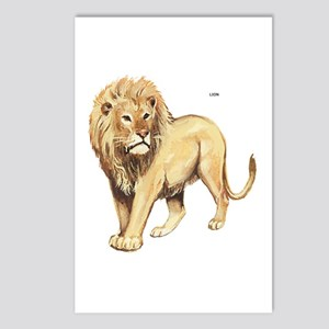 Lion Animal Postcards (Package of 8)