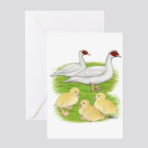 Duck White Muscovy Family Greeting Cards