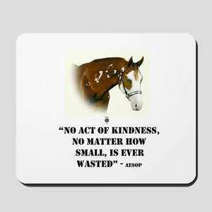 AESOP: No Act Of Kindness, Is Ever Wasted Mousepad