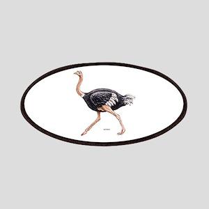 Ostrich Bird Animal Patches