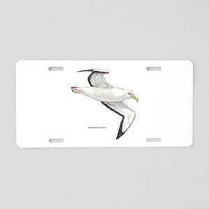 Wandering Albatross Bird Aluminum License Plate