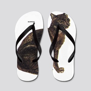 Burmese Cat Flip Flops