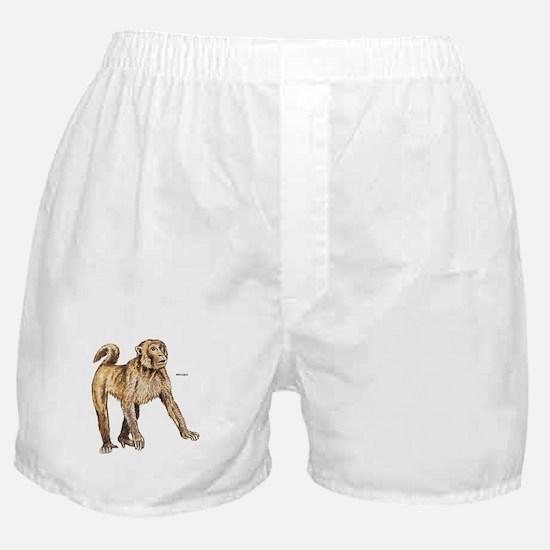 Macaque Monkey Ape Boxer Shorts
