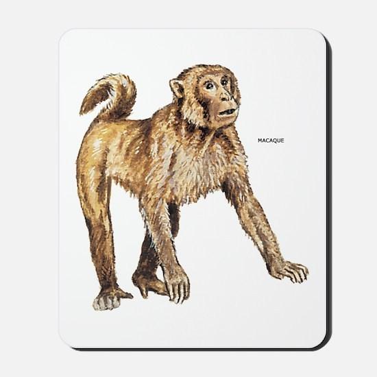 Macaque Monkey Ape Mousepad