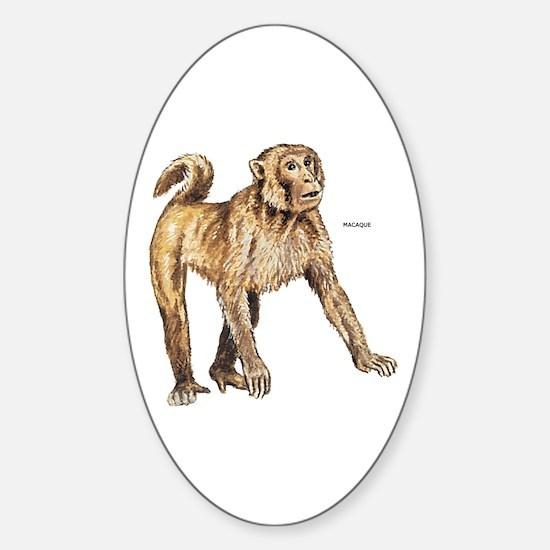 Macaque Monkey Ape Sticker (Oval)