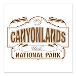 Canyonlands National Park Square Car Magnet 3