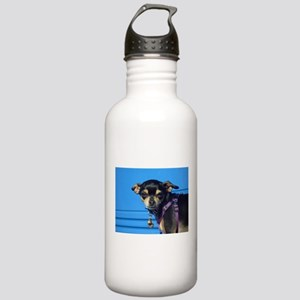 I Chiwawa Stainless Water Bottle 1.0L