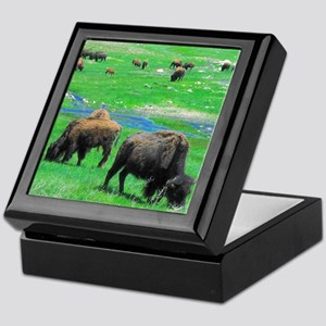 South Dakota Bison Keepsake Box