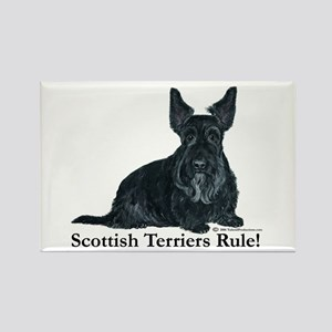 Scottish Terriers Rule! Rectangle Magnet