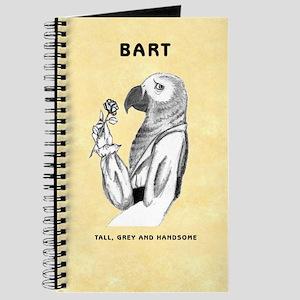 Bart Illustrations Journal