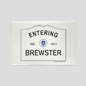 Brewster Rectangle Magnet