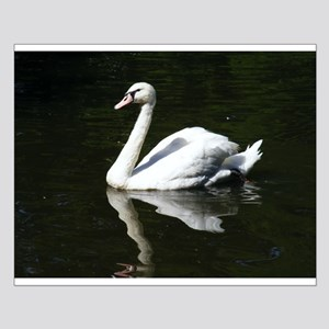 White Swan Small Poster