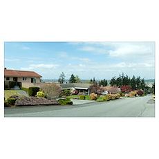 Houses along a street, Washington State Poster