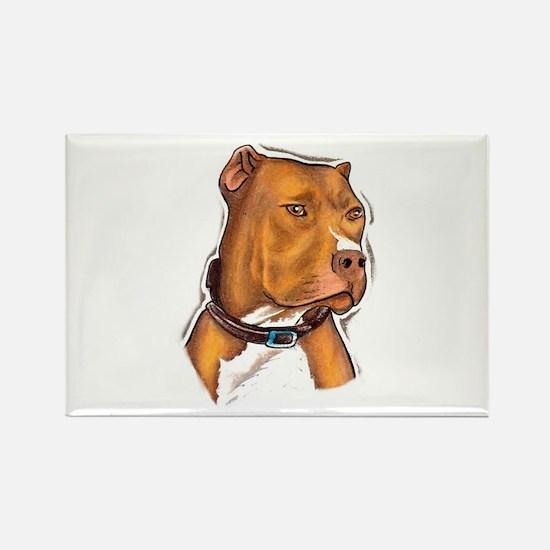Pit Bull Beauty Rectangle Magnet (100 pack)