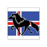 Icelandic horses Square