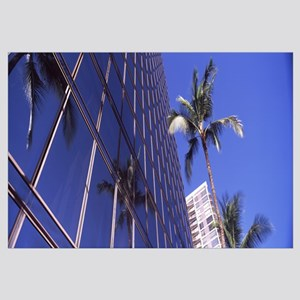 Low angle view of palm trees in front of buildings
