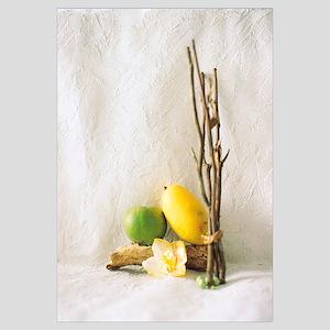 Mango, Woods and Flower, Studio Shot
