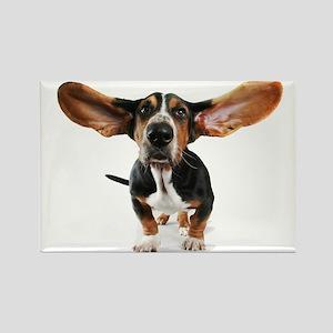 Dog long ears Rectangle Magnet