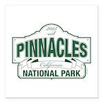 Pinnacles National Park Square Car Magnet 3
