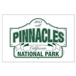 Pinnacles National Park Large Poster