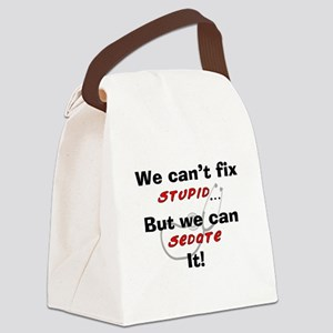 We can fix stupid for LIGHTS Canvas Lunch Bag