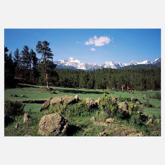 Longs Peak, Beaver Meadows, Rocky Mountain Nationa