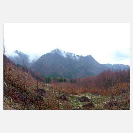 Mountain range, Carpathian Mountain Range, Brasov,