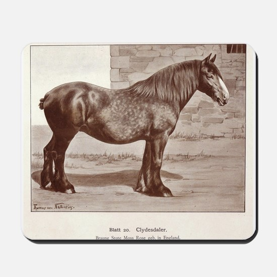 Clydesdale Drawing Mousepad