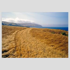 Sand, Santa Rosa Island, Channel Islands National