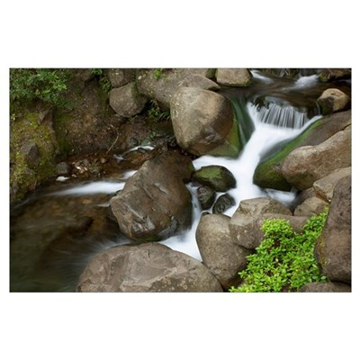 Hawaii, Maui, Iao River Valley Waterfall Poster