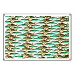 School of Tropical Amazon Fish 1 Banner