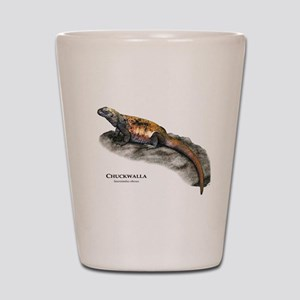 Chuckwalla Shot Glass